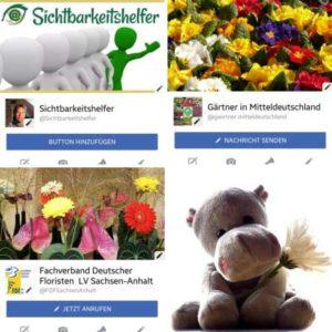 Soziale Medien - Facebookseiten