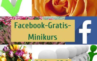 Facebook-Gratis-Minikurs